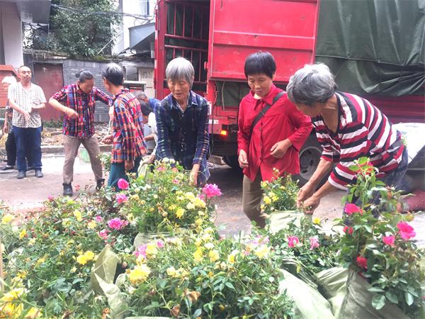 自贡市自流井五星街磨子井社区社会治理增添美丽